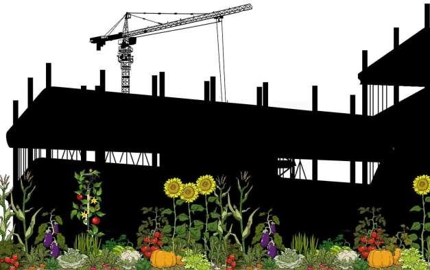 gibson-communitygardens-shutterstock_img